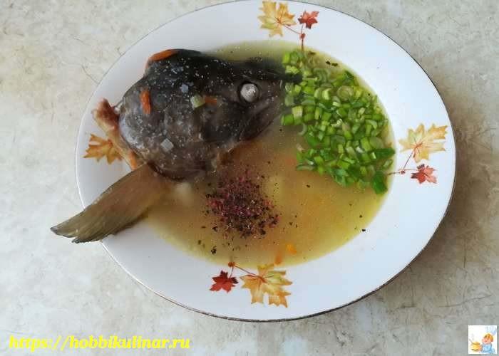 Рыбный суп из головы и хвоста кеты