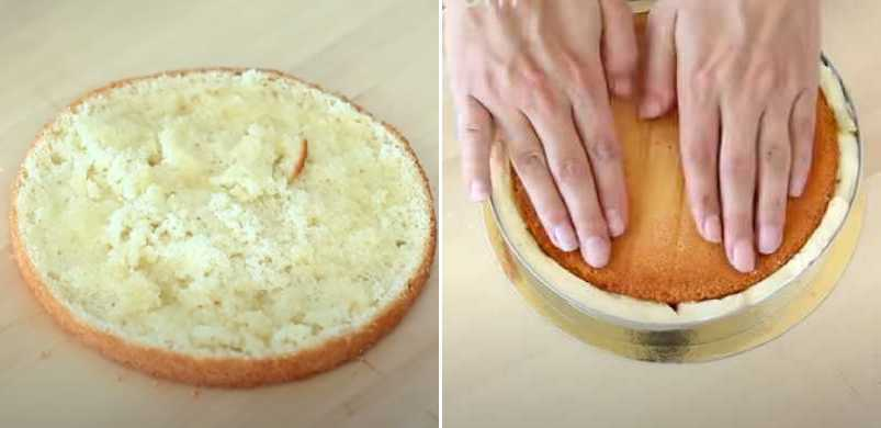 укладываем второй слой бисквита