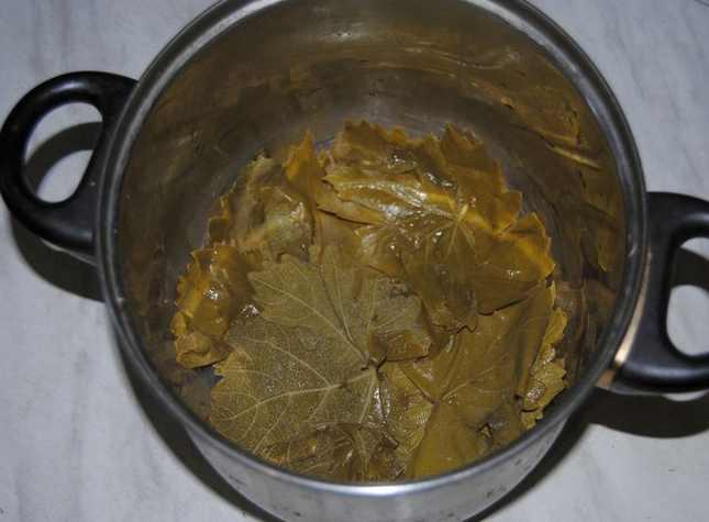листья на дне кастрюли