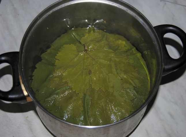 листья в кастрюле